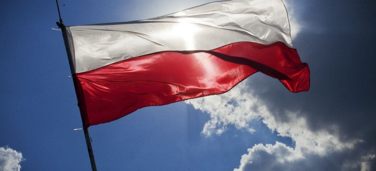 Der polnische Staat und die Gesellschaft