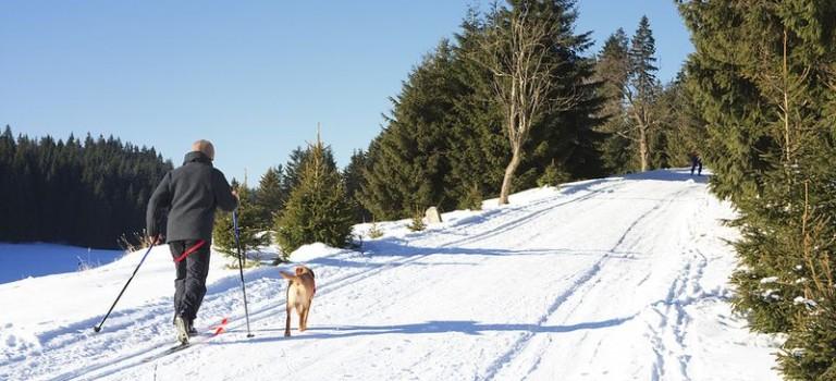 Skilanglauf in Polen