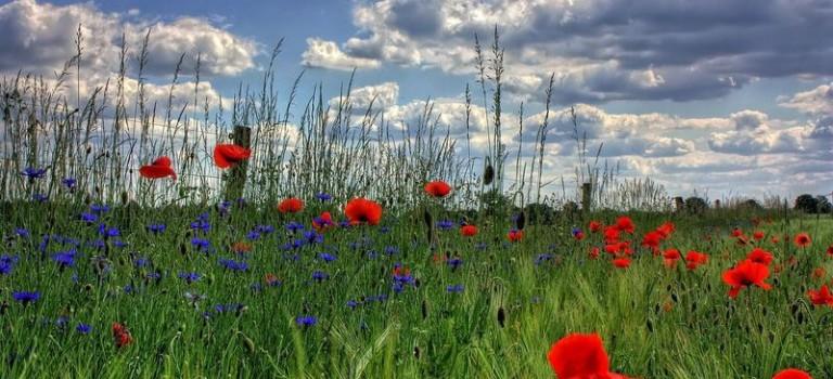Erholung und Urlaub in Polen